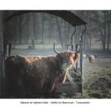 balades-photographiques-3-8189